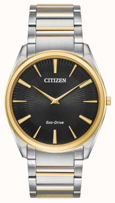 Citizen  AR3074-54E