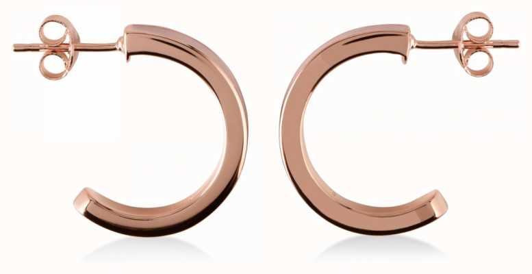 Radley Jewellery Hatton Row Rose Gold Plated Silver Earrings RYJ1012