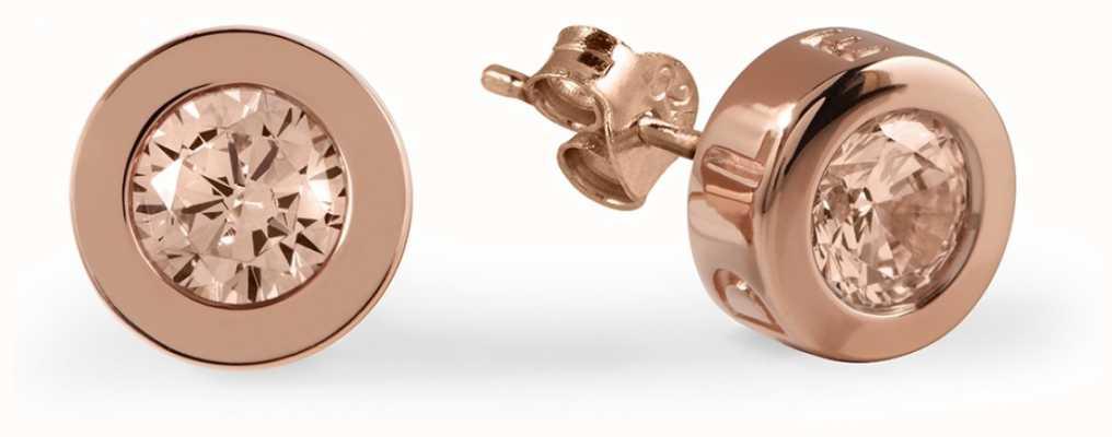 Radley Jewellery Vintage Rose Stone Set Rose Gold Plated Stud Earrings RYJ1030