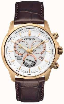 Citizen Calibre 8700 Perpetual Calendar Watch | Brown Leather Strap BL8153-11A